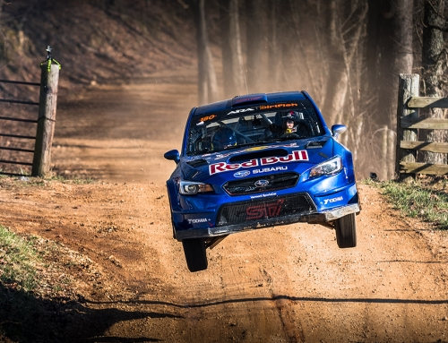 100 Acre Wood Rally: Fast Forest Photos