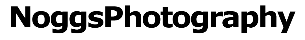 NoggsPhotography Logo